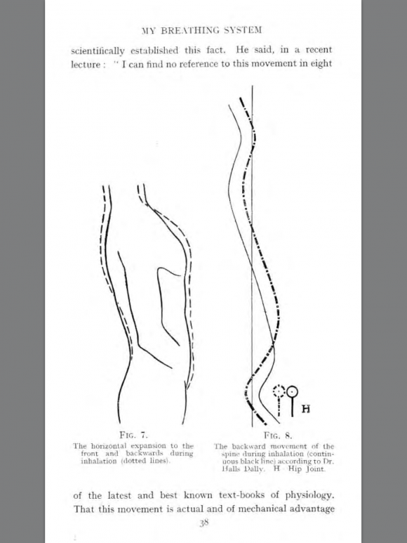 muller drawing