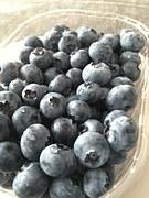 bilberry 2