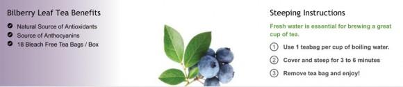 bilberry banner